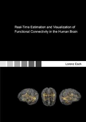 Real-Time Estimation and Visualization of Functional Connectivity in the Human Brain
