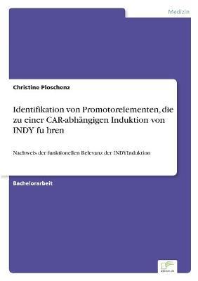 Identifikation von Promotorelementen, die zu einer CAR-abhangigen Induktion von INDY führen