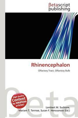 Rhinencephalon