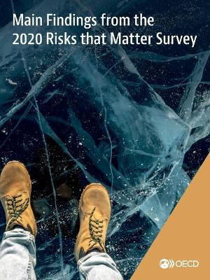 Main findings from the 2020 risks that matter survey