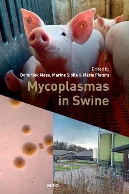 Mycoplasmas in Swine